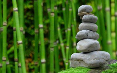 Ładny oraz czysty zieleniec to zasługa wielu godzin spędzonych  w jego zaciszu w toku pielegnacji.